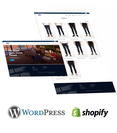 Ecommerce Wordpress or Shopify Website